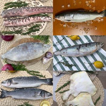 рыба свежемороженая c доставкой